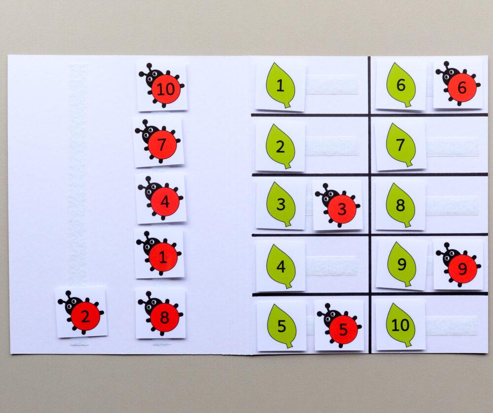 Matchmap cijfers thema lieveheersbeestjes - leerbubbels