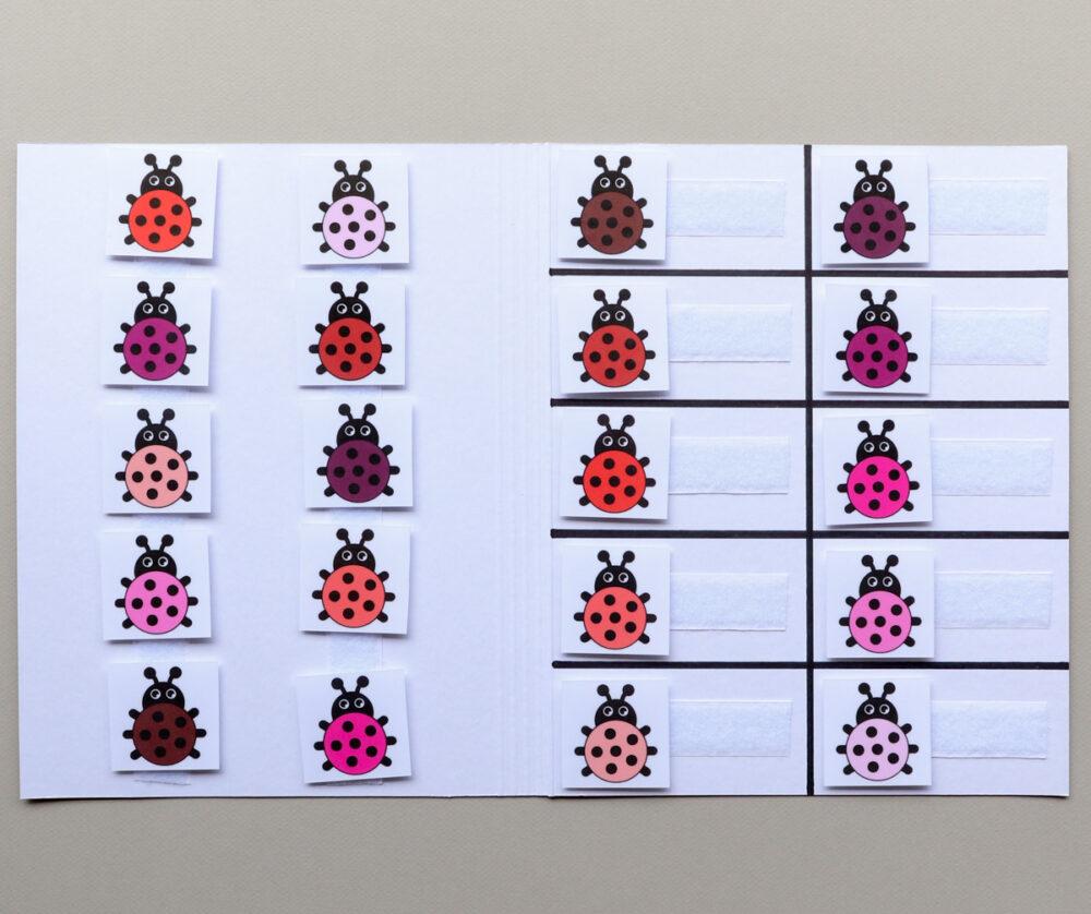 Matchmap kleuren thema lieveheersbeestjes - Leerbubbels