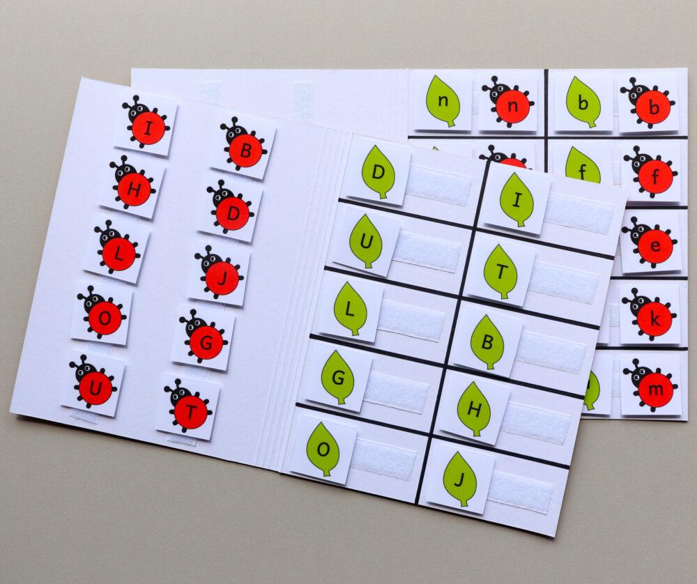 Matchmappen letters thema lieveheersbeestjes - leerbubbels