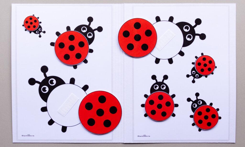 Didactisch materiaal voor kleuters - meetmap lieveheersbeestjes 02