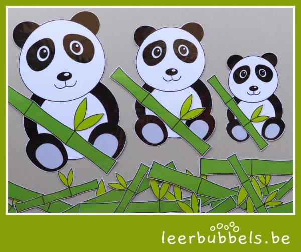 Sorteerspel groot-klein pandabeer