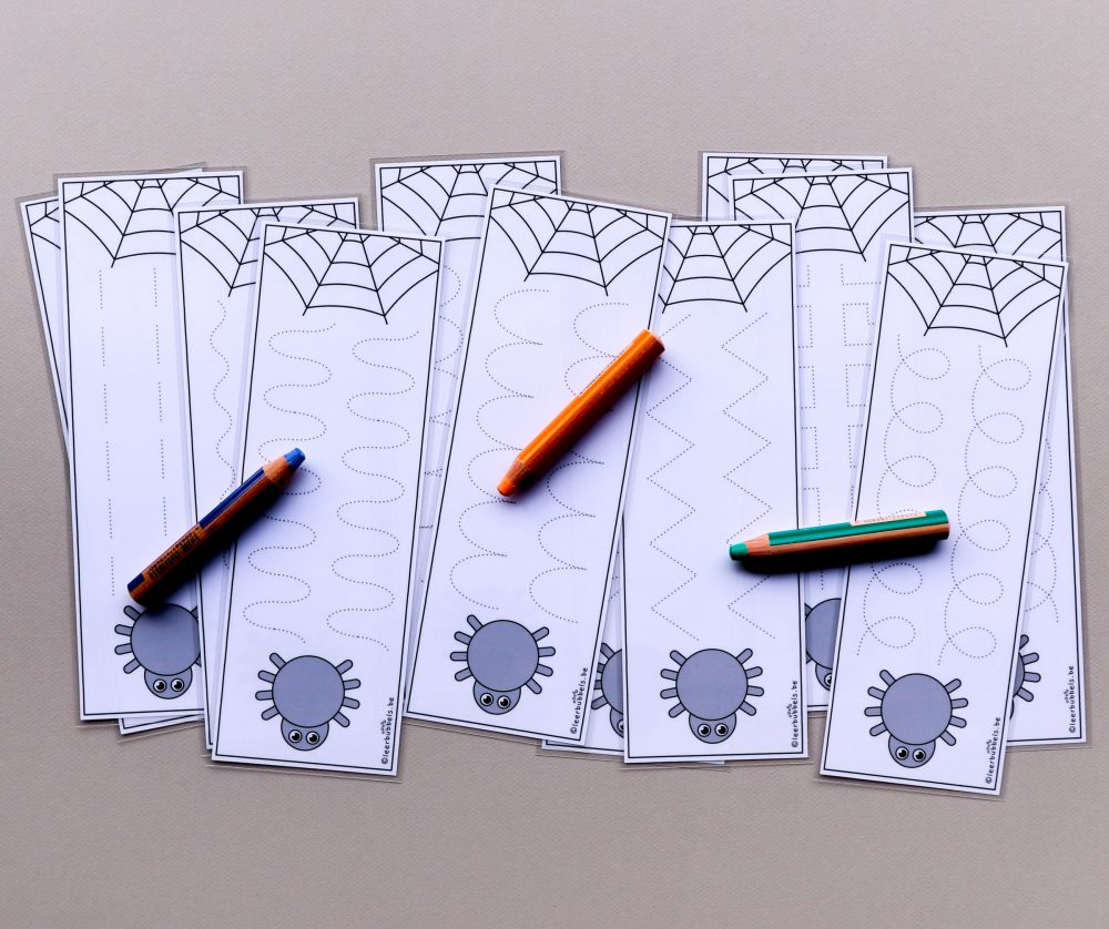 Schrijfkaarten spinnenweb