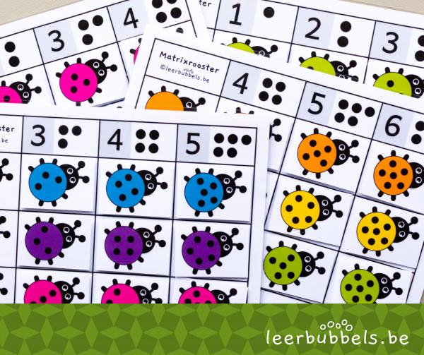 Matrixroosters thema lieveheersbeestjes - leerbubbels